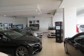 Salone Mazda Suzuki