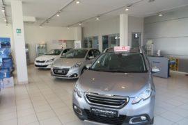 Salone Peugeot 2